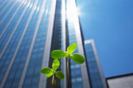 La sostenibilidad a través del Liderazgo en Eficiencia Energética y Diseño