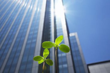 Going Green with Leadership in Energy and Environmental Design
